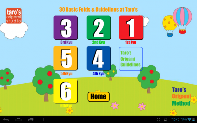 Taro's Origami Artist Basic Certification Course