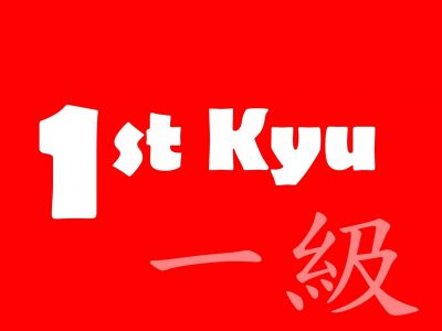 1st-Kyu Red Belt