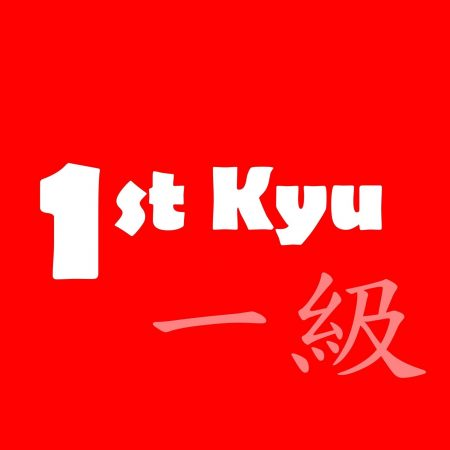 1st-Kyu Red Belt