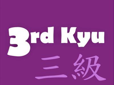 3rd-Kyu Purple Belt