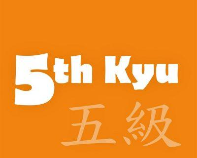 5th-Kyu Orange Belt