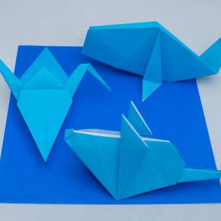 4th-Kyu Blue Belt Basic Folds for Taro's Origami Method