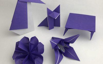 Purple Belt Models