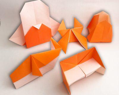 Orange Belt Models