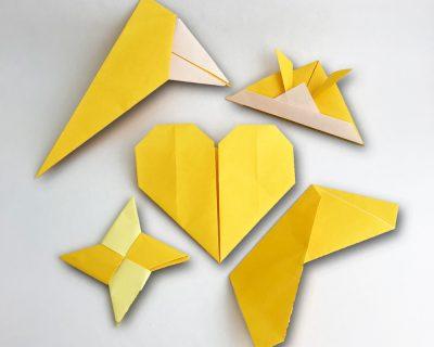 Yellow Belt Models